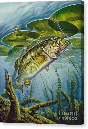 Bass And Frog Canvas Print by Jon Q Wright