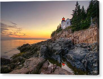 Bass Harbor Lighthouse Reflected In Tidal Pool Canvas Print by At Lands End Photography