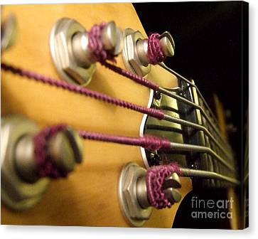 Canvas Print featuring the photograph Bass II by Andrea Anderegg