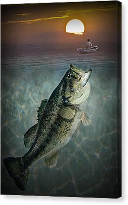 Bass Revenge Canvas Print by Randall Nyhof