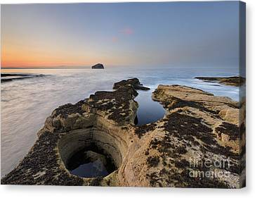 Bass Rock Canvas Print