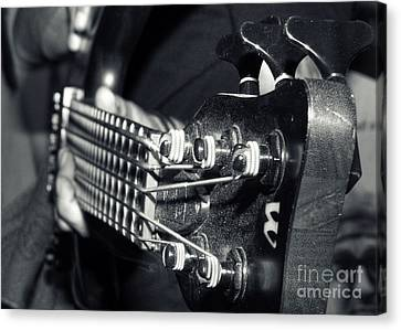 Performers Canvas Print - Bass  by Stelios Kleanthous