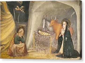 Bassa, Ferrer 1290-1348. Frescoes Canvas Print by Everett