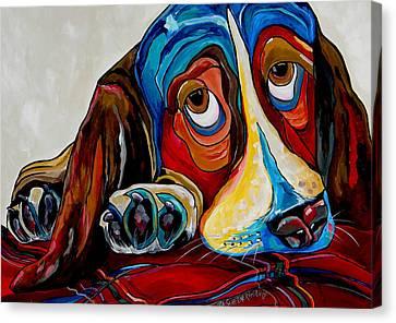 Bassett Has The Blues Canvas Print by Patti Schermerhorn