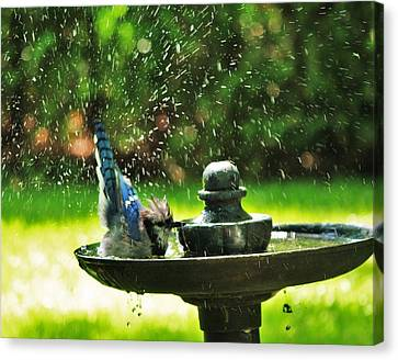 Bath Time Canvas Print by Al Fritz