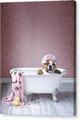 Wash Tubs Canvas Print - Bath Time by Lisa Jane