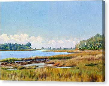 Batiquitos Lagoon Marshland Canvas Print by Mary Helmreich