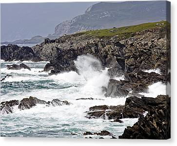 Battered Coast Canvas Print by Tony Reddington