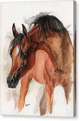 Bay Arabian Foal Watercolor Portrait Canvas Print by Angel Ciesniarska
