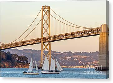 Bay Bridge Gold Canvas Print by Kate Brown