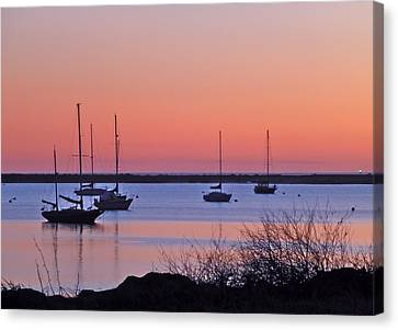 Bay Harbor Canvas Print