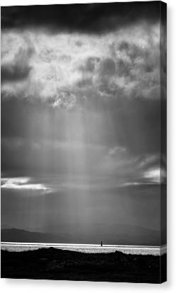Bay Light Canvas Print by Dave Bowman