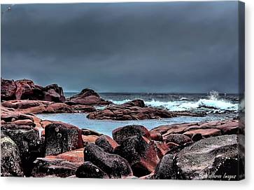 Bay Of Fires 3 Canvas Print by Wallaroo Images