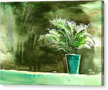 Bay Window Plant Canvas Print by Anil Nene