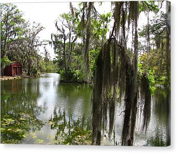Canvas Print featuring the photograph Bayou by Beth Vincent