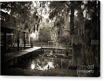 Bayou Evening Canvas Print by Scott Pellegrin