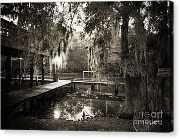 South Louisiana Canvas Print - Bayou Evening by Scott Pellegrin