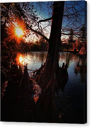 Canvas Print featuring the photograph Bayou Sundown by Robert McCubbin