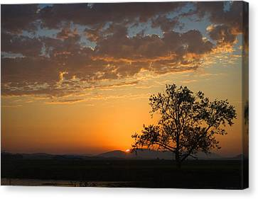 Canvas Print featuring the photograph Bayview Sunset by Sonya Lang
