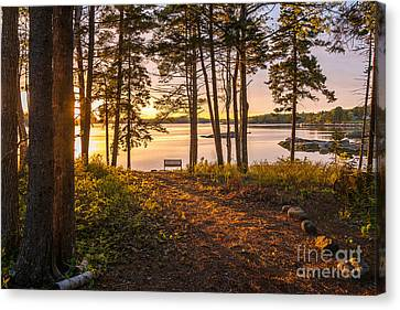 Bayview Sunset Canvas Print by Susan Cole Kelly