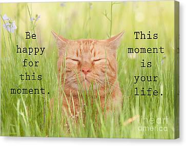 Be Happy For This Moment Canvas Print by Sari ONeal