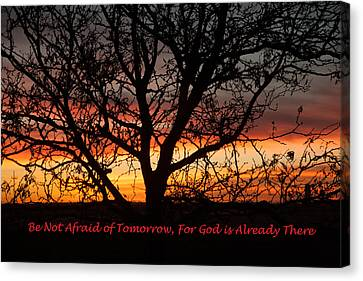 Be Not Afraid Canvas Print by Shirley Heier