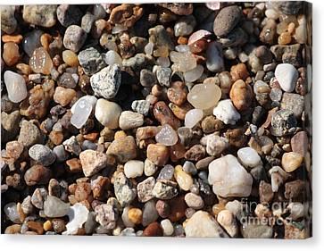 Earth Tones Canvas Print - Beach Agates by Carol Groenen