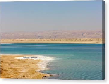 Beach Along The Dead Sea, Jordan Canvas Print by Keren Su