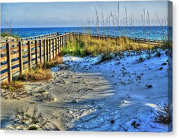 Beach And The Walkway Colored Canvas Print