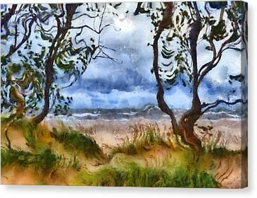 Beach And Trees Canvas Print by Michelle Calkins