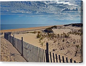 Beach At Cape Henlopen Canvas Print