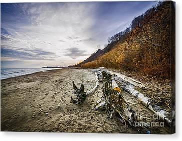 Beach At Scarborough Bluffs Canvas Print