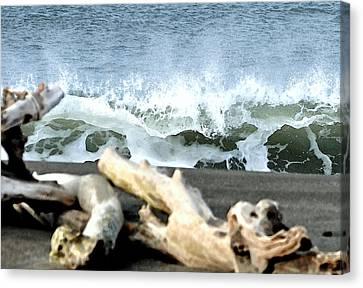 Beach Blast Canvas Print by Michael Bruce