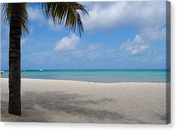 Beach Day Canvas Print by Robert  Moss