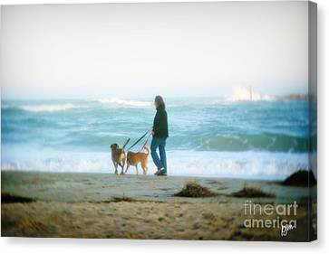 Canvas Print featuring the photograph Beach Dogs by Phil Mancuso