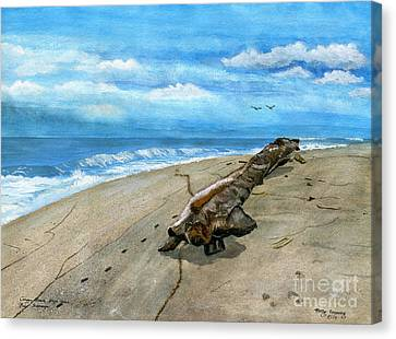 Canvas Print featuring the painting Beach Drift Wood by Melly Terpening