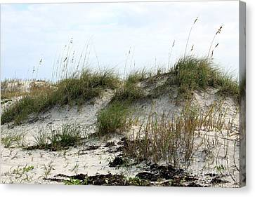 Canvas Print featuring the photograph Beach Dune by Chris Thomas