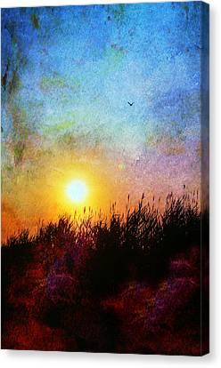 Bistro Canvas Print - Beach Dune by Laura Fasulo