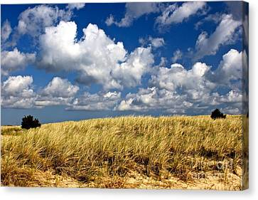 Canvas Print featuring the photograph Beach Dunes by Amazing Jules