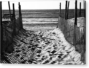 Sand Dunes Canvas Print - Beach Entry Black And White by John Rizzuto