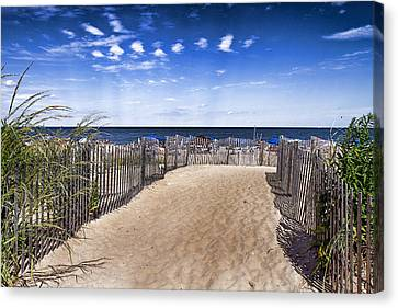 Beach Entry Canvas Print by Trudy Wilkerson