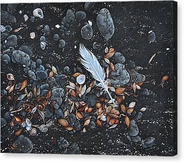 Beach Floor. Flinders Vic Canvas Print by Elena Kolotusha