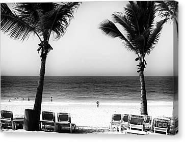 Beach Framing Canvas Print by John Rizzuto