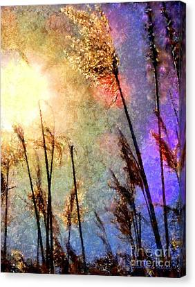 Beach Grass Afternoon Canvas Print by Janine Riley