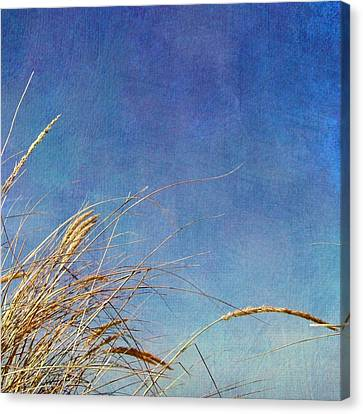 Seacape Canvas Print - Beach Grass In The Wind by Michelle Calkins