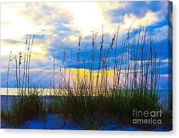 Beach Grass Sunset Canvas Print