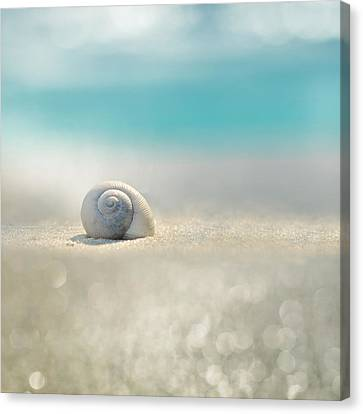 Houses Canvas Print - Beach House by Laura Fasulo