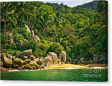 Beach In Mexico Canvas Print by Elena Elisseeva