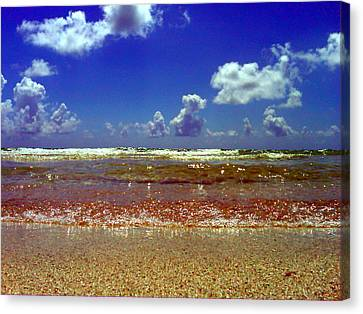 Beach Canvas Print by J Anthony