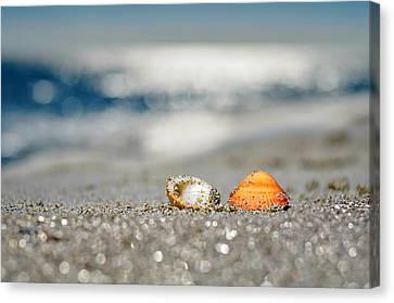 Beach Lovers Canvas Print by Laura Fasulo